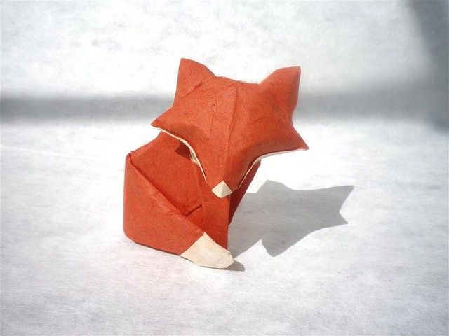 Daniel Chang - A simple Fox, https://flic.kr/p/9JZn11