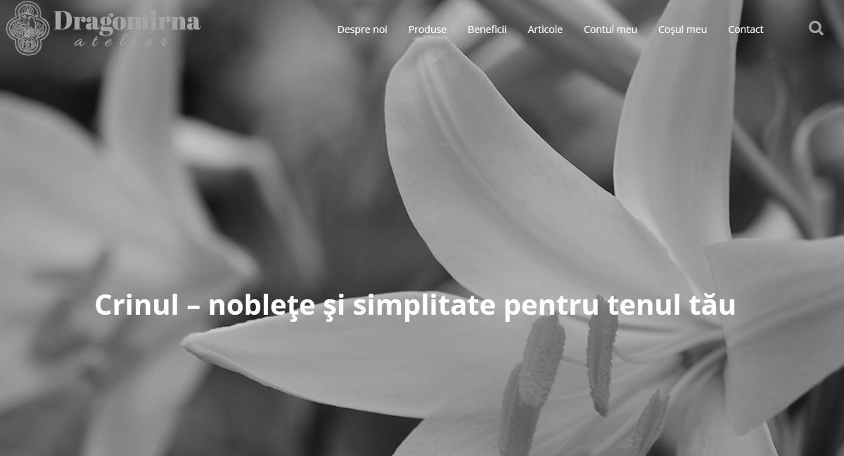 Atelier Dragomirna - Homepage