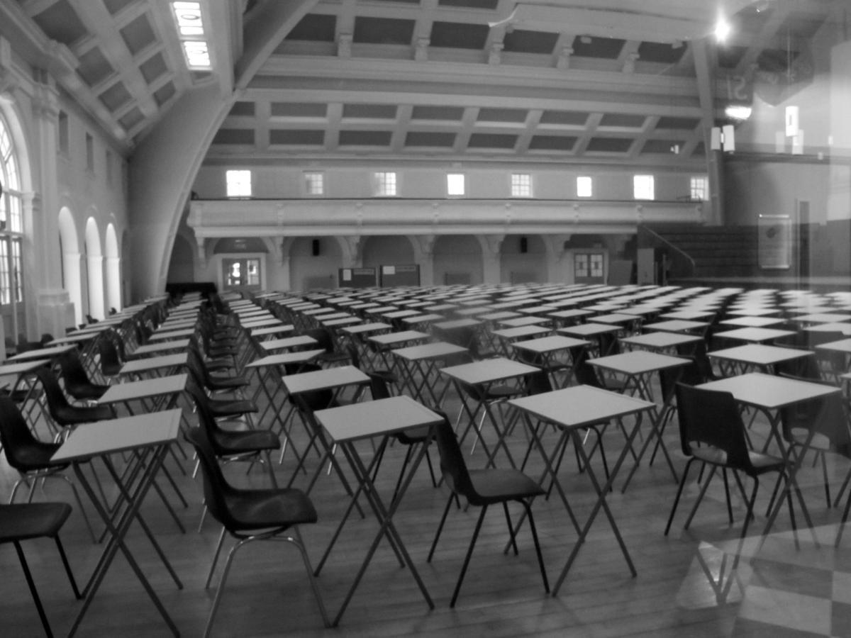 Rain Rabbit - Exam time at Goldsmiths