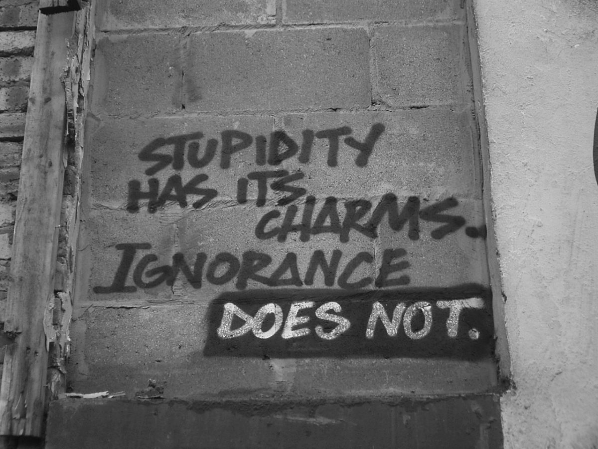duncan c - Stupidity has its charms