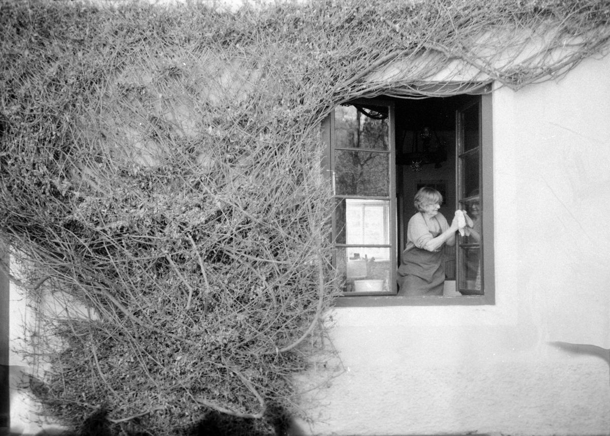 Marian Rainer-Harbach - Spring Cleaning, Negative